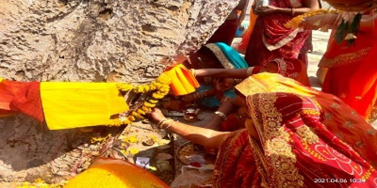 NEWS: मल्हारगढ़ में विधि विधान के साथ मनाया गया दशा माता का त्यौहार, महिलओं ने पूजा अर्चना कर की सुख शांति और समृद्धि की कामना